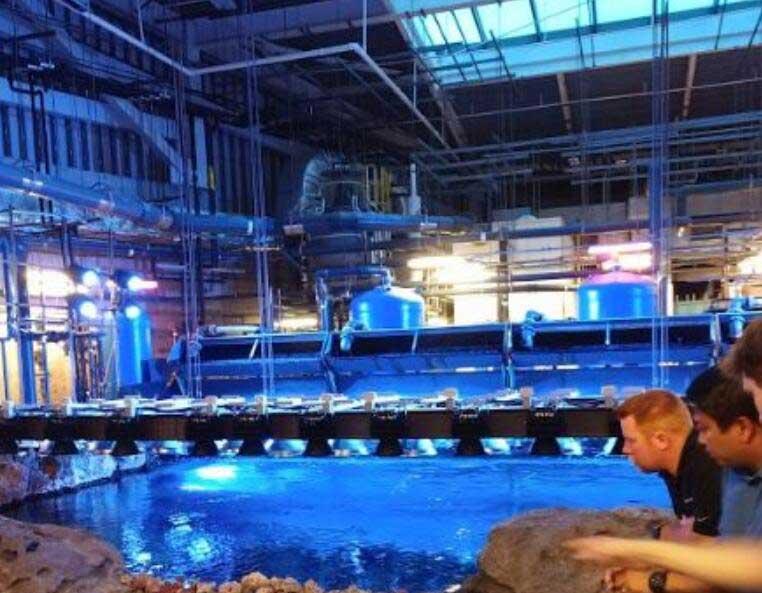 亚特兰大水族馆